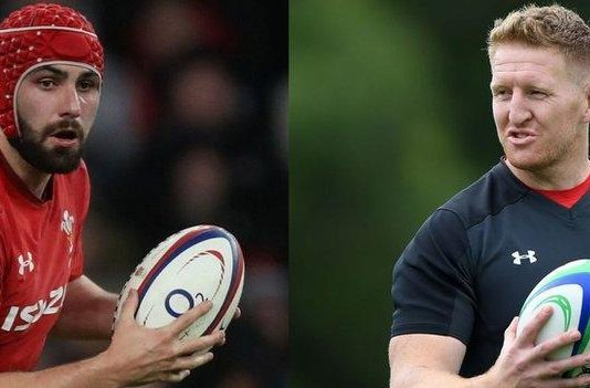 Wales lock Cory Hill is out of Rugby World Cup, Bradley Davies called up
