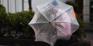 Typhoon Hagibis: Rugby World Cup and F1 could be affected